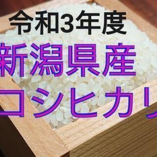 【ネット決済】《受付終了》令和3年度 新米コシヒカリ 玄米30㎏