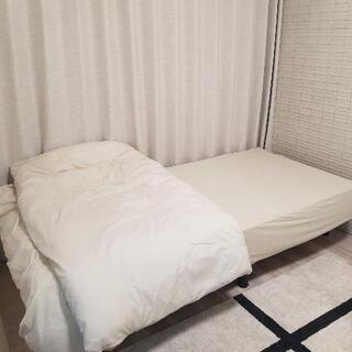 無料 (使用数回)マットレスベッド