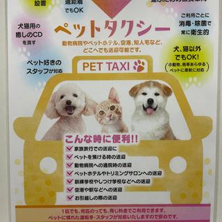 ☆姫路市&広島市☆ペットタクシー!!大切な御家族を安心、安全に!!