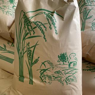 新米コシヒカリ玄米30kg 6,500円〜 成田産 令和3年収穫