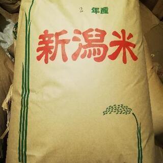 【ネット決済】令和二年度 新潟県豊栄産コシヒカリ