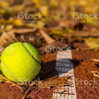 🍁10/9🍁【社会人限定❗】テニス会イベント開催のお知らせ🎾