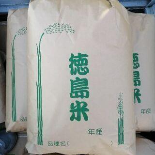 新米 令和三年産キヌヒカリ等外米 玄米30㌔