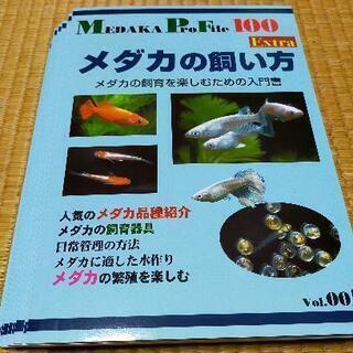 最新本入荷‼️「MEDAKA PRO FILE100」☆NMB☆...