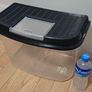 プラスチック製の飼育ケース