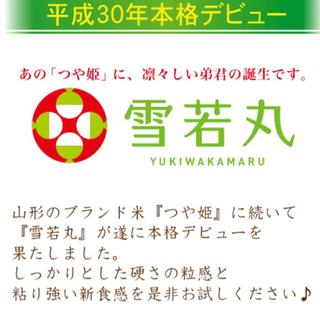 【ネット決済】令和2年度 雪若丸 10キロ