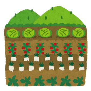 レンタル畑!畑貸します。