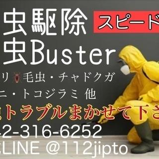 ゴキブリ ノミ ダニ 毛虫 トコジラミ 害虫Buster