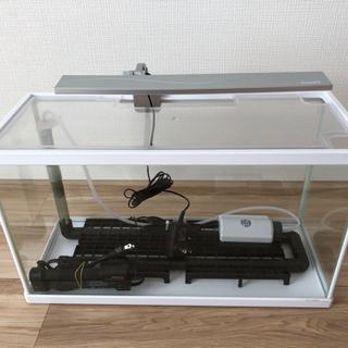 水槽セット(大) LEDライト ASP方式 熱帯魚・金魚