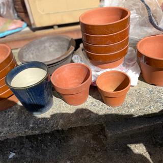 植木鉢 たくさん