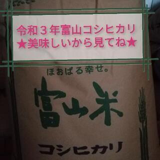 ★買ってください★令和3年産富山県南砺市コシヒカリ玄米30kg