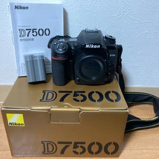 Nikon D7500 単焦点レンズセット
