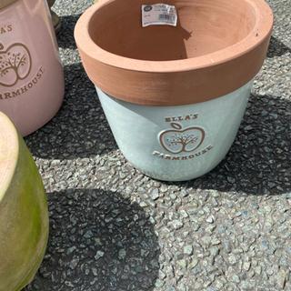 植木鉢 アプリコットブルー