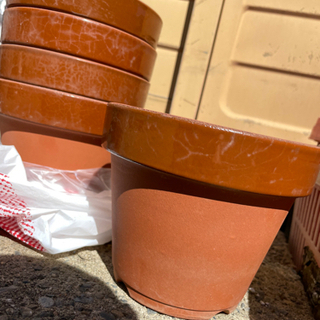 【無料】植木鉢差し上げます せともの よりどりみどり