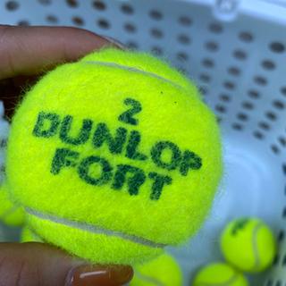 硬式テニスボール - 家具