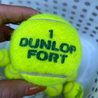 硬式テニスボール - 文京区