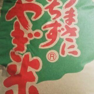 新米令和3年産ササニシキ玄米30Kg
