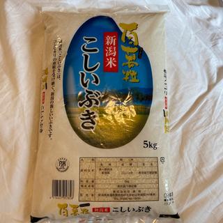 【ネット決済】こしいぶき 5キロ×3袋