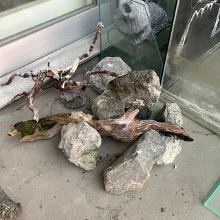 水槽用品 - 釧路市
