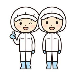【日払い・週払い可】【時給1100円】洋菓子製造  東区東苗穂