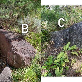 庭石【13種類】大サイズ ガーデニング 岩 特大