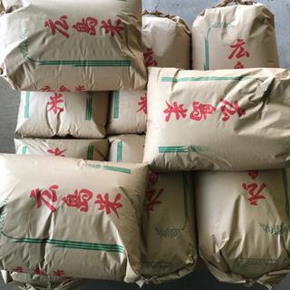 農家直送 令和3年 玄米アキサカリ 30kg