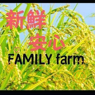 R3産 コシヒカリ30kg 玄米渡し