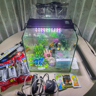 水槽セット 30cm 熱帯魚などに GEX グラステリア …