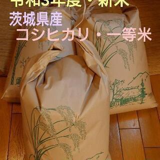 【ネット決済】新米・令和3年度・茨城県産コシヒカリ・一等級・値下げ