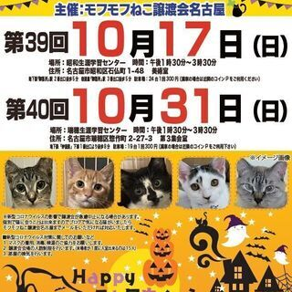 10/31(日) 猫の譲渡会 in 名古屋市瑞穂生涯学習センター