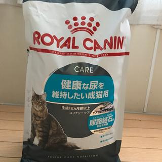 ロイヤルカナン  猫