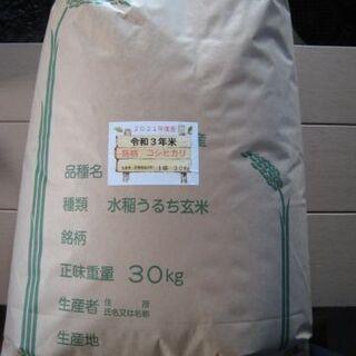 令和3年コシヒカリ新米(玄米) 30Kg