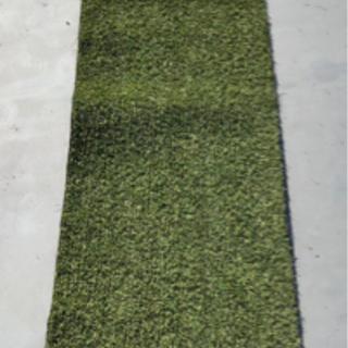 人工芝(W500×2500mm)芝厚10mm 差し上げます。