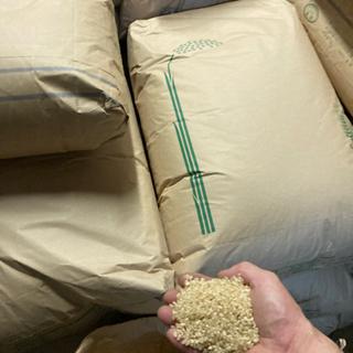 きぬひかり玄米30kg