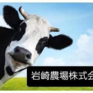 🐄岩崎農場株式会社🐄 正社員 バイト✔急募✔
