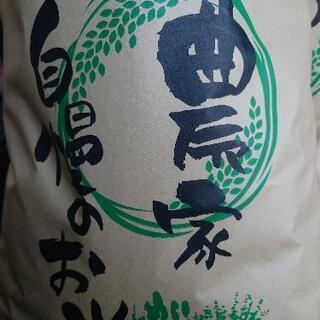 令和2年 愛知県産コシヒカリ  白米 10キロ