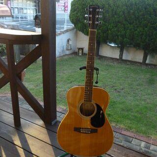 セピアクルー アコースティックギター