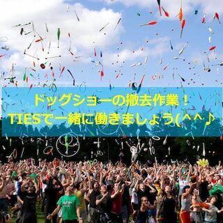 🌈大正駅集合!色々なワンチャン見ながら撤去作業🌈