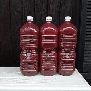 PSB (光合成細菌) 2リットル 1本 500円①