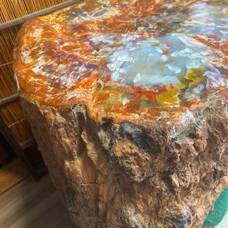 【ネット決済】モッカ石 木の化石