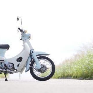 【ネット決済】リトルカブ4速セル付き 110cc