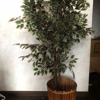 造花 オリーブの木