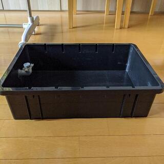 メダカ専用飼育容器を譲ります!