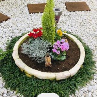 【無料でどうぞ!】🌺 小さな花壇 🌸 ガーデニングに