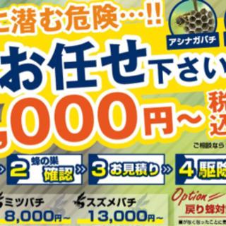 石川県にて蜂駆除お任せください!!