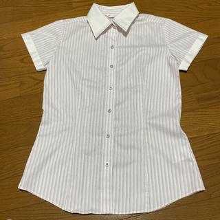 ブラウス Yシャツ 半袖 レディース