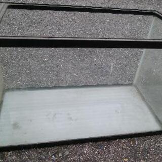 60cmガラス水槽 中古 差し上げます