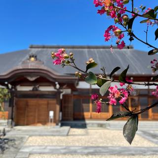 10月のお寺ヨガ