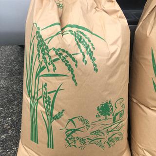 令和3年産 新米 減農薬生産