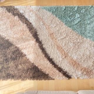 じゅうたん ウィルトンラグ ニトリの画像